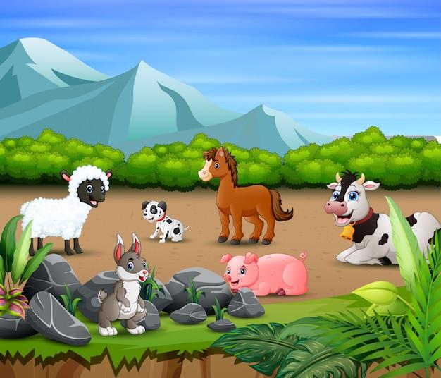 Farma zwierząt relaksująca się w naturze