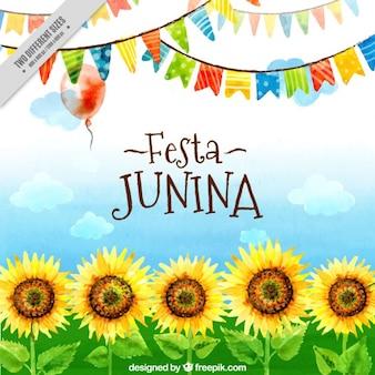 Festa junina akwarela słoneczniki i girlandy w tle