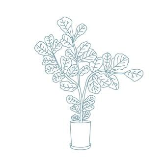 Fiddle-listna figa lub ficus lyrata rosnąca w doniczce. ozdobna roślina doniczkowa ręcznie rysowane z konturami na białym tle. wspaniała egzotyczna roślina doniczkowa w przydomowym ogrodzie. ilustracja wektorowa monochromatyczne.