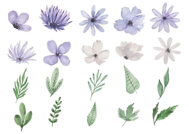 Fioletowy kwiat akwarela clipart