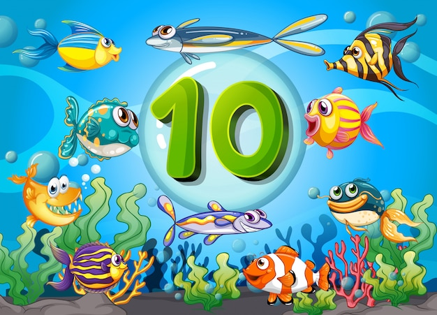 Fiszki numer dziesięć z 10 rybami pod wodą