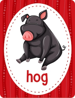 Fiszki ze słownictwem ze słowem hog