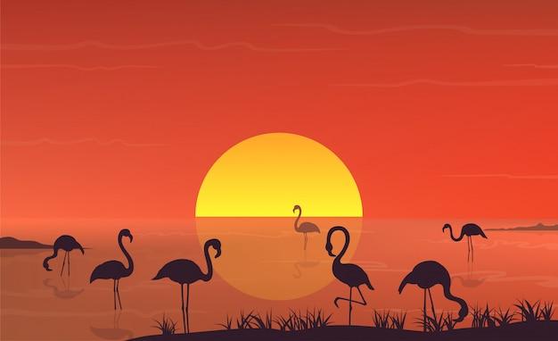 Flaming sylwetka przy zmierzchu krajobrazem na jeziornej scenie.