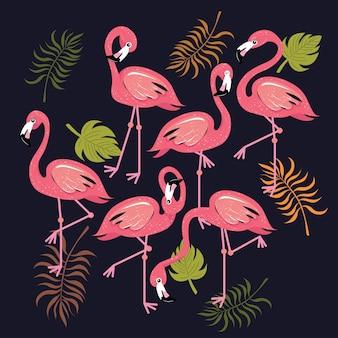 Flamingi