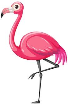 Flamingo w stylu kreskówki na białym tle
