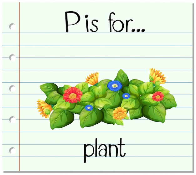 Flashcard alfabet p jest rośliną flor