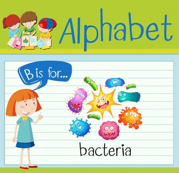 Flashcard litera b jest dla bakterii