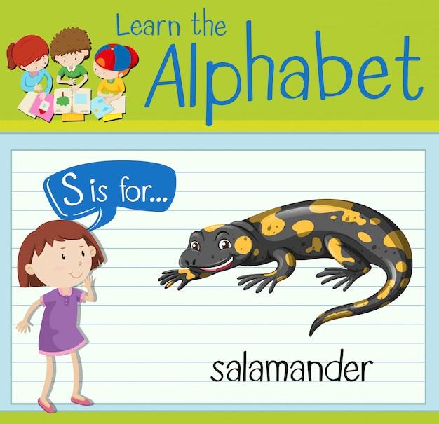 Flashcard litera s jest dla salamandry
