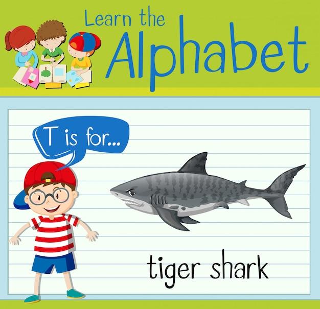 Flashcard litera t jest dla rekina tygrysiego