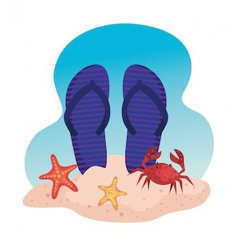 Flip-flop z rozgwiazdy i kraba w piasku na plaży