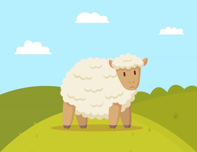 Fluffy sheep walking on meadow
