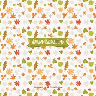 Fondo otoñal con un patrón de hojas