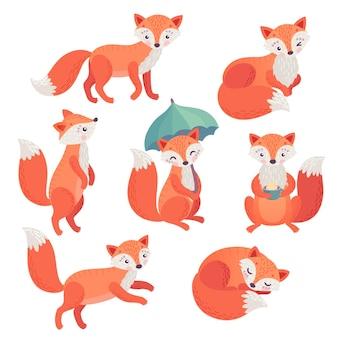 Fox zestaw ręcznie rysowane stylu