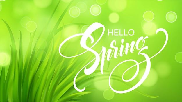 Frash wiosna zielona trawa tło. ilustracja