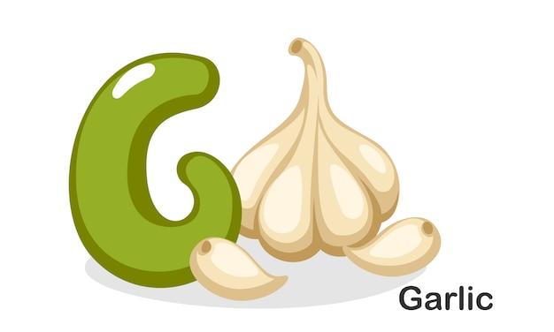 G dla czosnku