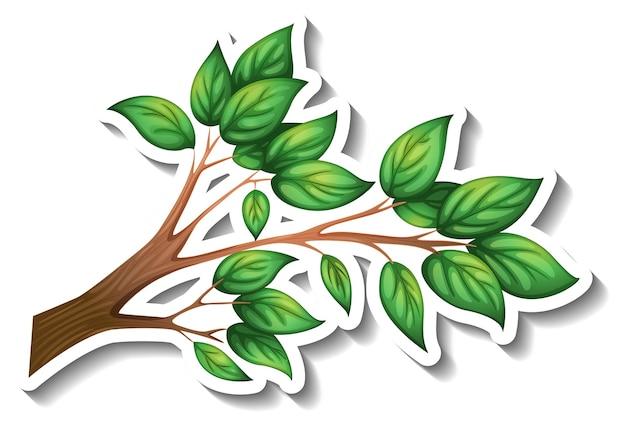 Gałąź drzewa z naklejką z zielonymi liśćmi na białym tle