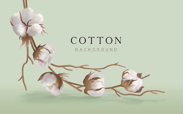 Gałązka bawełny na jasnozielonym poziomym tle