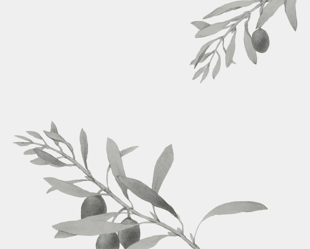 Gałązka oliwna na kartki świąteczne