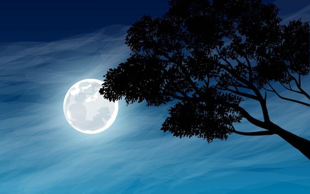 Gałęzie drzew w świetle księżyca