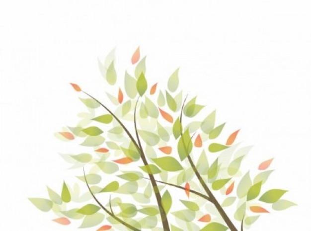 Gałęzie i liście