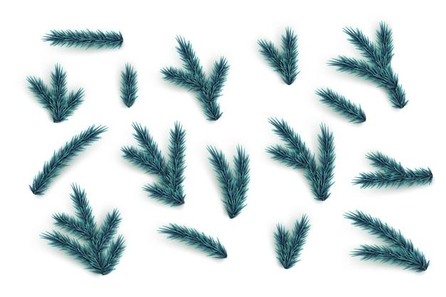 Gałęzie jodły i zestaw elementów wektor niebieska kolekcja części choinki