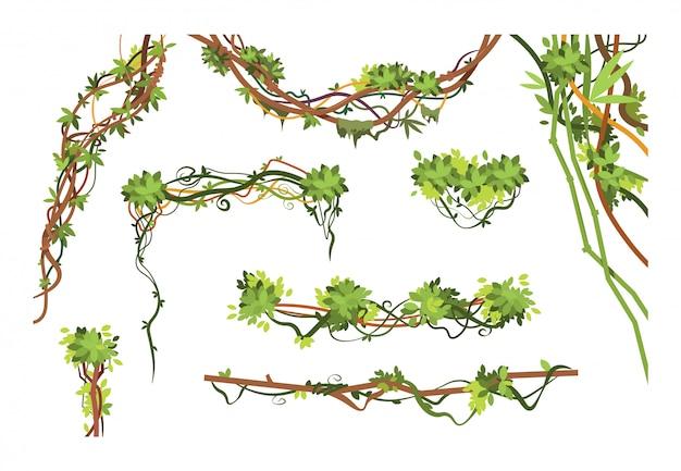 Gałęzie winorośli w dżungli. kreskówka wiszące rośliny liany. kolekcja zielonych roślin wspinaczkowych w dżungli