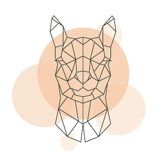 Geometryczna głowa alpaki