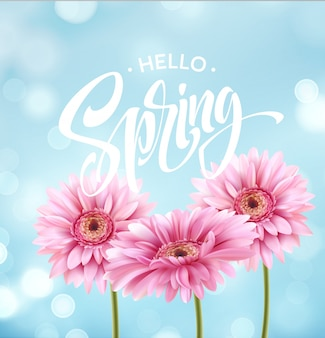 Gerbera flower and hello spring letter.