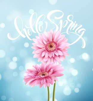 Gerbera kwiat tło i napis wiosna. ilustracja