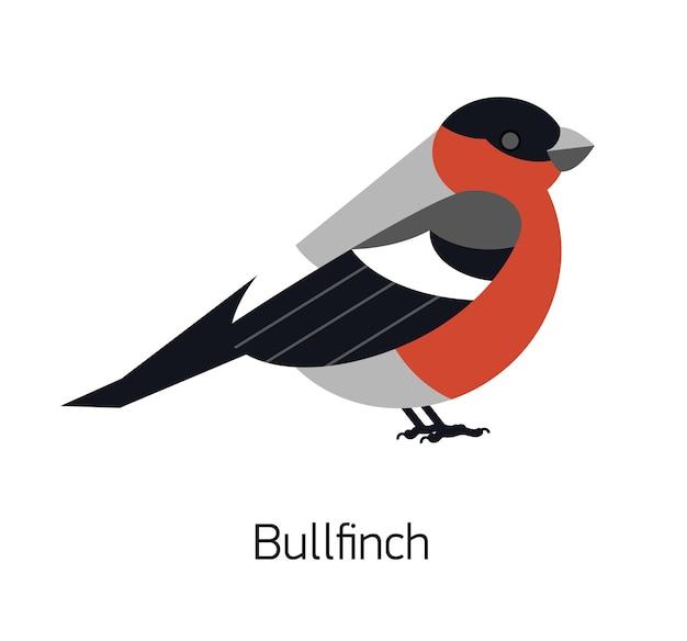 Gil zwyczajny na białym tle. śliczny, uroczy leśny ptak wróblowaty z jasnoczerwonym upierzeniem. śmieszne gatunki leśne. nowoczesne kolorowe ilustracji wektorowych w modnym stylu geometrycznego mieszkania.