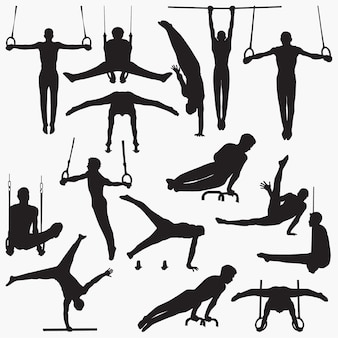 Gimnastyka sylwetki