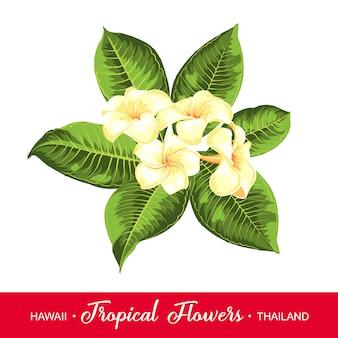 Girlanda ślubna z tropikalnymi kwiatami.