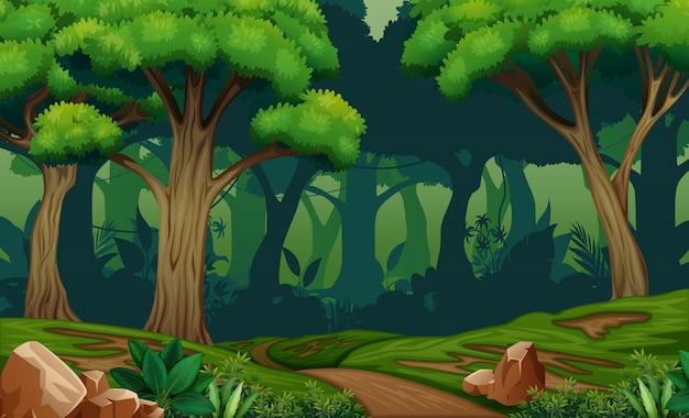 Głęboka lasowa scena z śladem w drewnach ilustracyjnych
