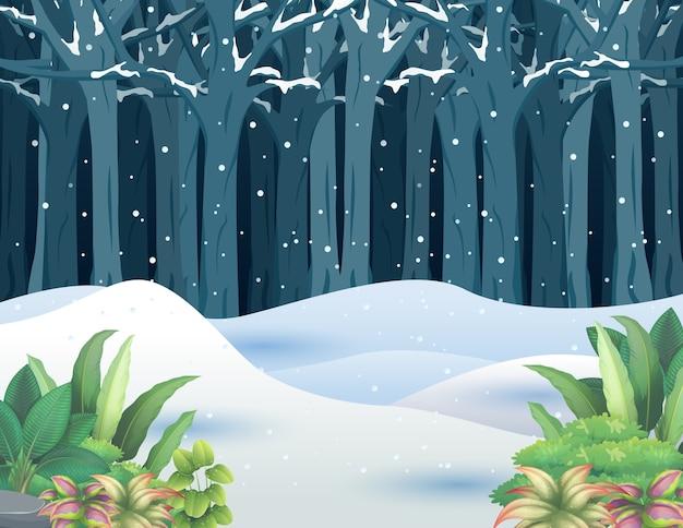 Głęboki zimowy las pokryty śniegiem