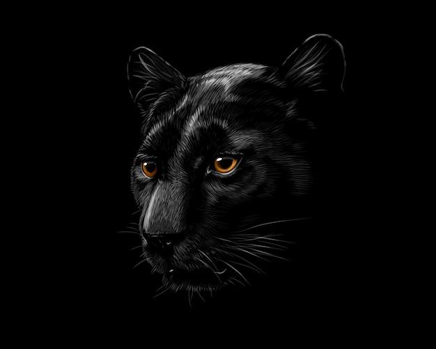 Głowa czarna pantera na białym tle na czarnym tle. ilustracji wektorowych