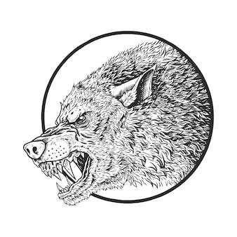Głowa ilustracja wilk