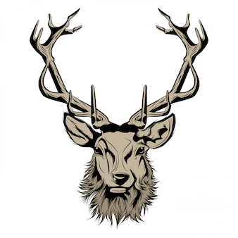 Głowa jelenia ilustracji