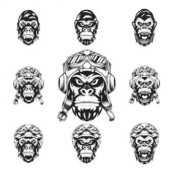 Głowa jeźdźców goryli