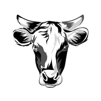 Głowa krowy