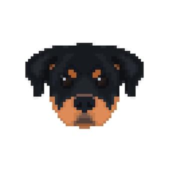Głowa rottweilera w stylu pikselowym.