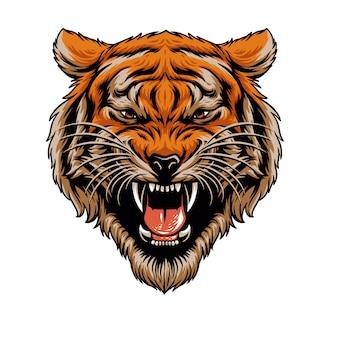 Głowa tygrysa