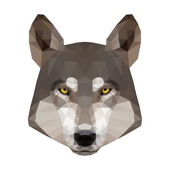 Głowa wilka. portret wilka low poly.