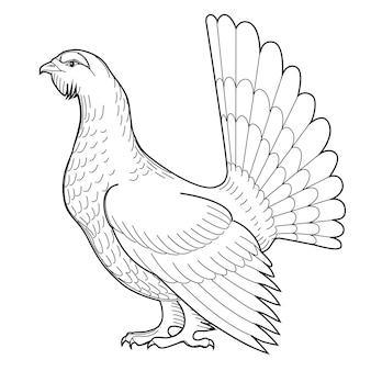 Głuszec ilustracja wektorowa do projektowania rysunek odręczny na białym tle