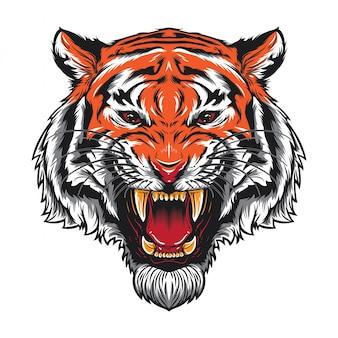 Gniewna tygrysia głowa
