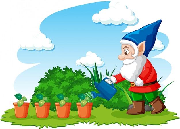 Gnomu podlewania rośliny w ogródzie na białym tle