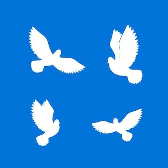 Gołąb biały wolny ptaki na niebie