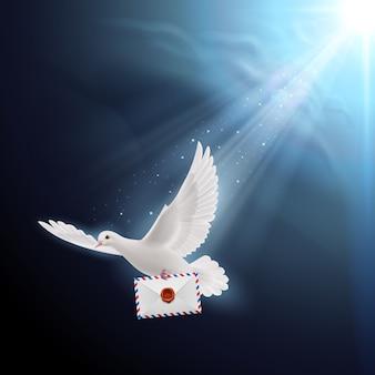 Gołąb biały
