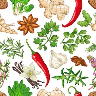 Gorący wzór z ziołami na białym tle
