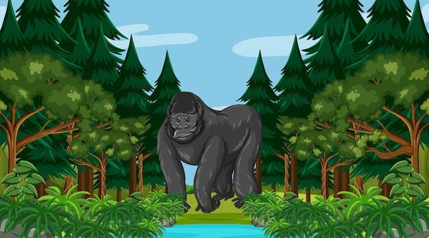 Goryl W Lesie Lub W Lesie Deszczowym Z Wieloma Drzewami Darmowych Wektorów
