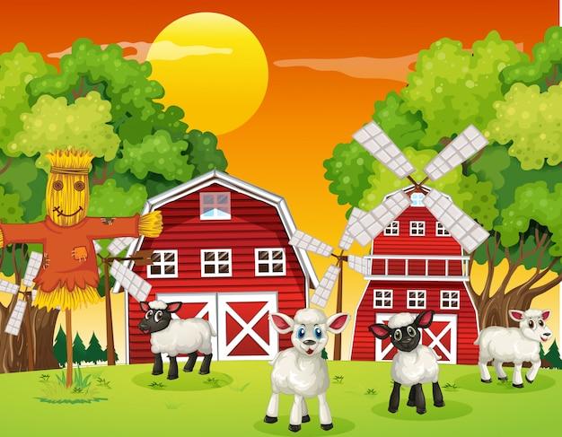 Gospodarstwo sceny w przyrodzie z stodoła, wiatrak i owce